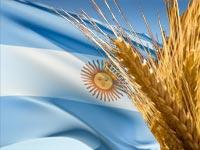 trigo_argentina001